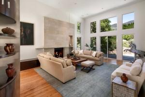 Leesa Wilson Goldmuntz Modern Interior